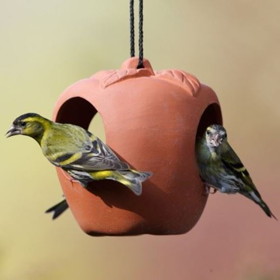 terracotta apple bird feeder the