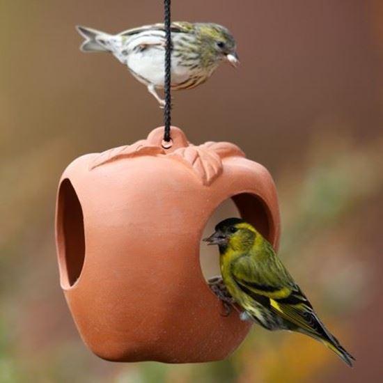 Picture of Terracotta Apple Bird Feeder