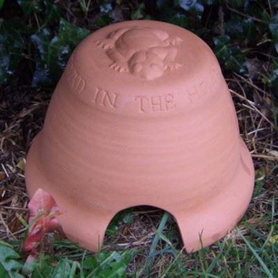 Toad Abode Terracotta Uk Com Hand Made Uk Terracotta