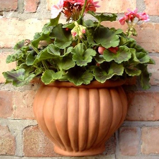 Picture of Malay Wall pots