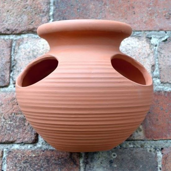 Picture of Strawberry Pot Wall Planter