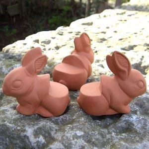 Picture of Rabbit Pot Feet