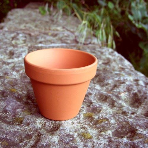Flower Pots Terracotta: Traditional FlowerPots