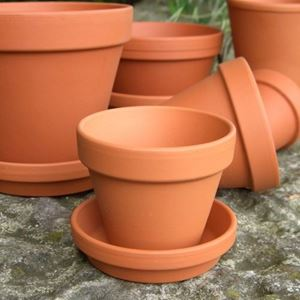 Picture of Traditional Flowerpots With Saucers