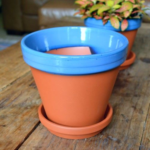 Glazed Coloured Flower Pots Terracotta Uk Com The Home