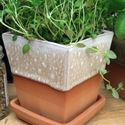 Picture of Glazed & Unglazed Herb Pots