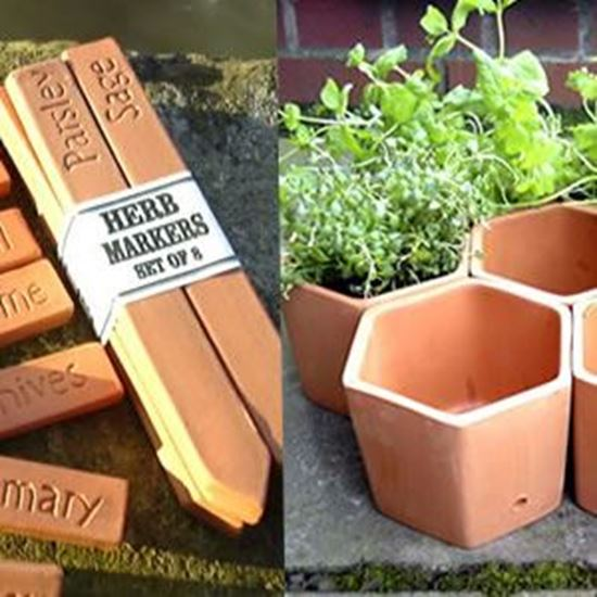 Picture of 7 Hexagonal Herb Pots & 8 Markers