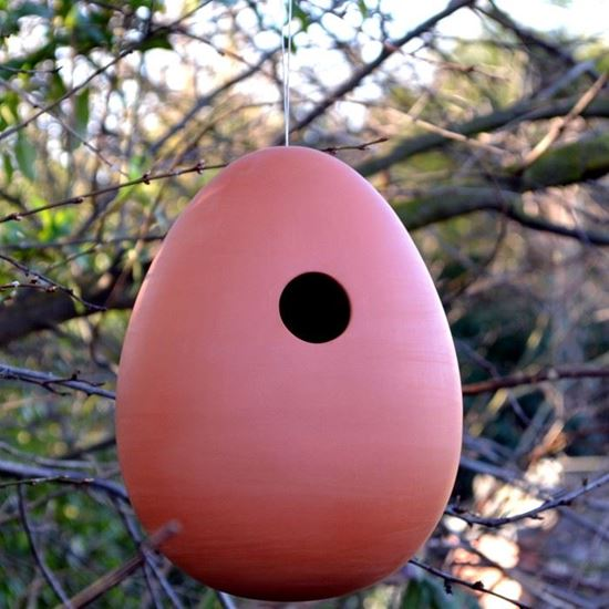 Picture of Terracotta Hanging Egg Bird Nester