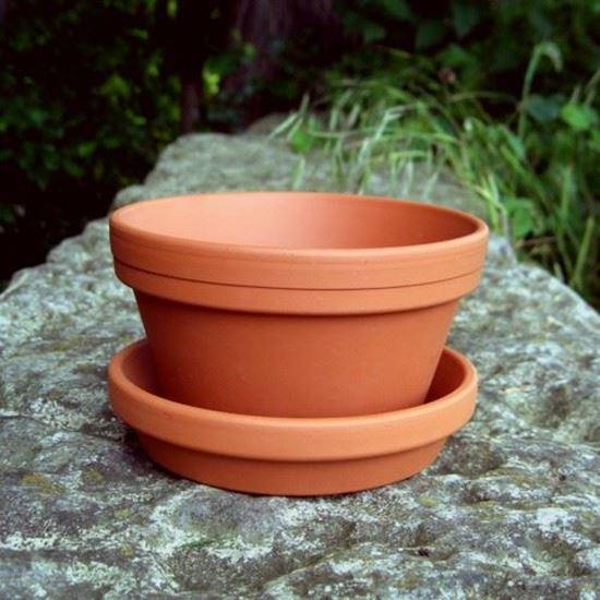 Half Flower Pot saucers 13cm x 75cm Terracottaukcom The