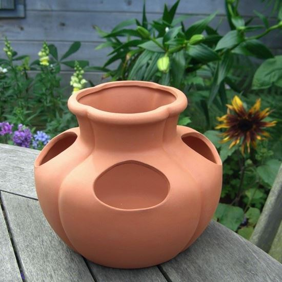 Picture of Strawberry Pot