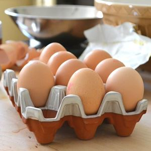 Picture of Ceramic Egg Trays with Cream Glaze | 12 Eggs