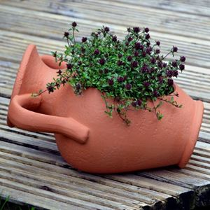 Picture of Amphora Planter