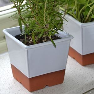 Picture of Herb Pot - White Glaze