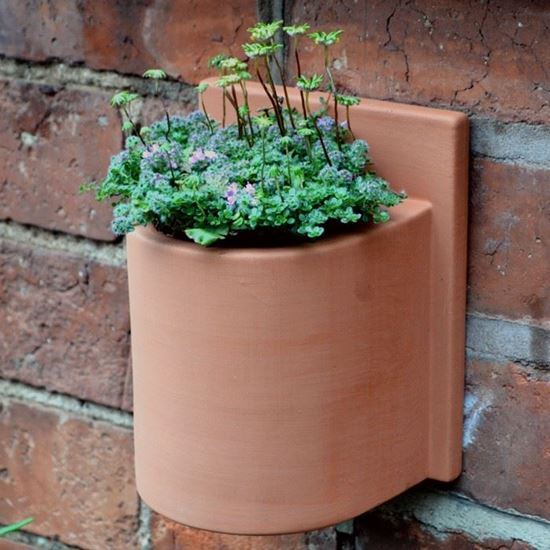 Picture of Herb Wall Pot - Round