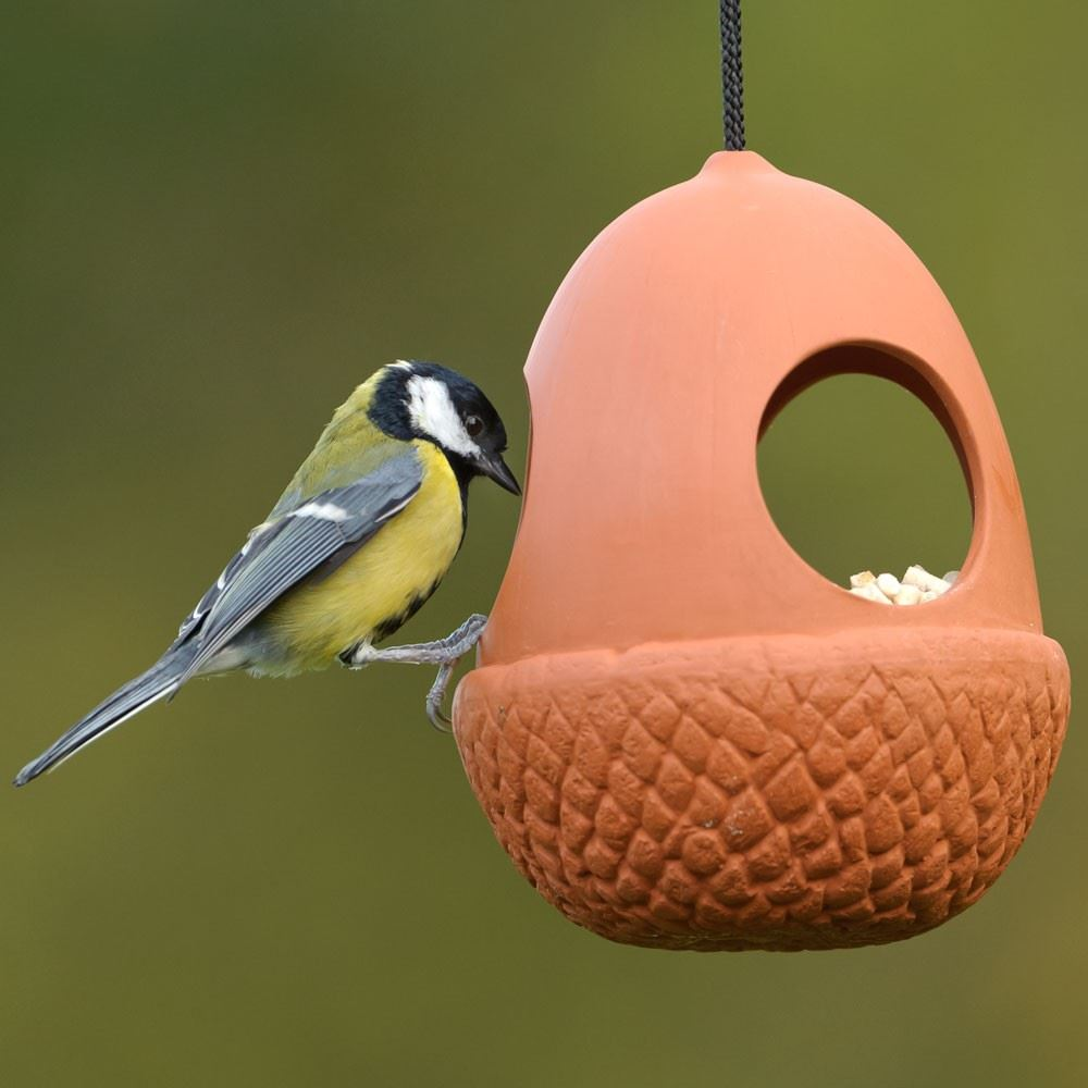 acorn hanging bird feeder the home. Black Bedroom Furniture Sets. Home Design Ideas