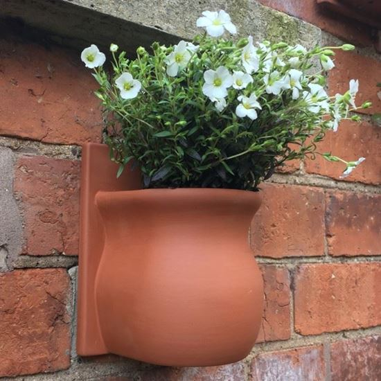 Picture of Herb Wall Pot - Urn