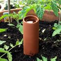 Picture of 'Olla' Terracotta Irrigation Pot