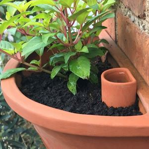 Picture of Wall Pot Waterer - Small