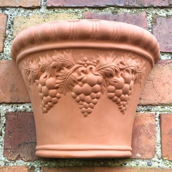 Picture of Grape Wallpot