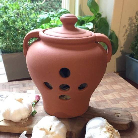 Picture of Terracotta Garlic Pot (Large)