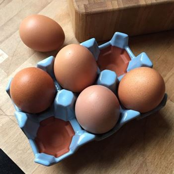 Picture of Ceramic Egg Tray with Pale Blue Glaze | 6 Eggs