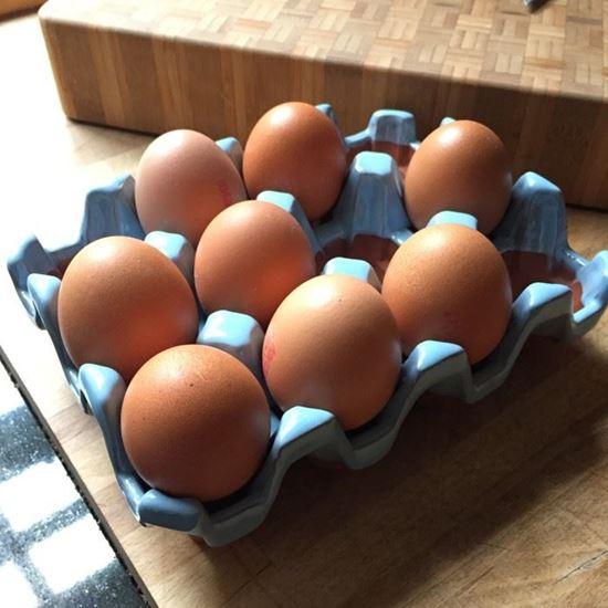 Picture of Ceramic Egg Holder - 12 Eggs - Pale Blue